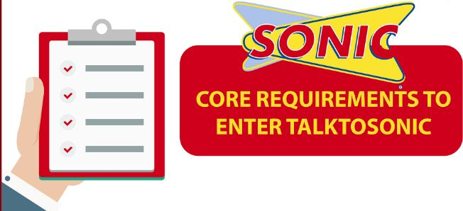 talktosonic survey image