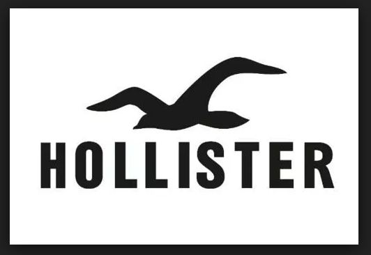 Hollister Survey online