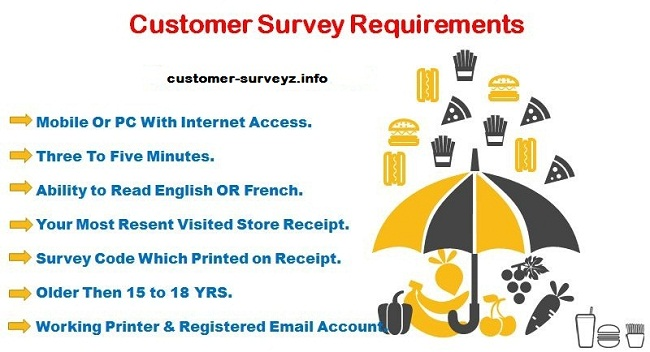 LEGO Customer Survey Rules & Requirements